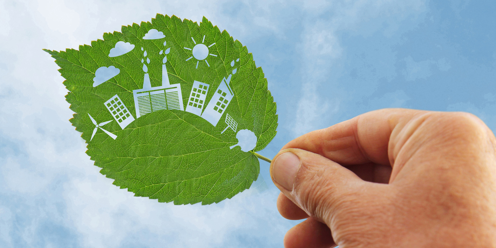 hand holding Green energy concept, cut the leaves of plants Bild-Nr. 88824296 © Alexey Kirillov - stock.adobe.com